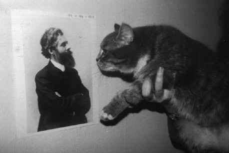 Annals of Improbable Research, Feline reactions to Bearded Men