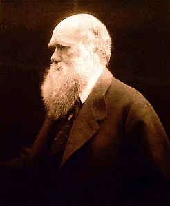 Julia Margaret Cameron photo portrait of Charles Darwin, online at The American Museum of Photography