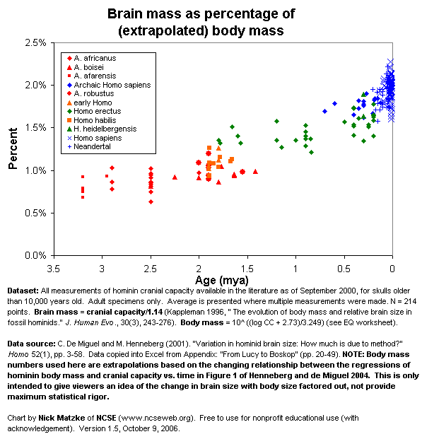Hominin brain mass as a percentage of body mass
